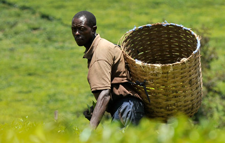 a man carrying a basket in a field